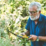 Old man gardening