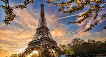 The Terrorist Attacks in Paris